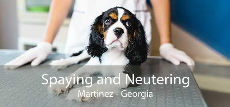 Spaying and Neutering Martinez - Georgia