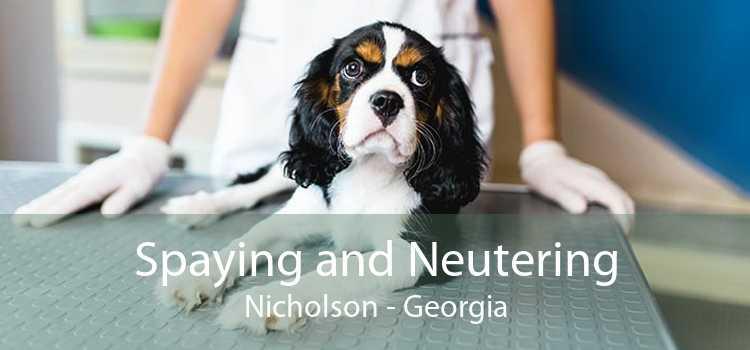 Spaying and Neutering Nicholson - Georgia
