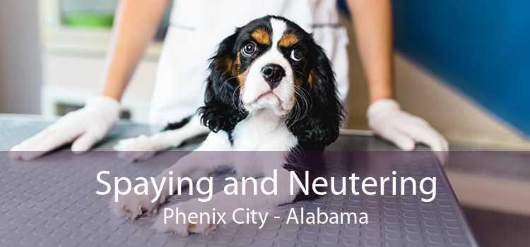 Spaying and Neutering Phenix City - Alabama