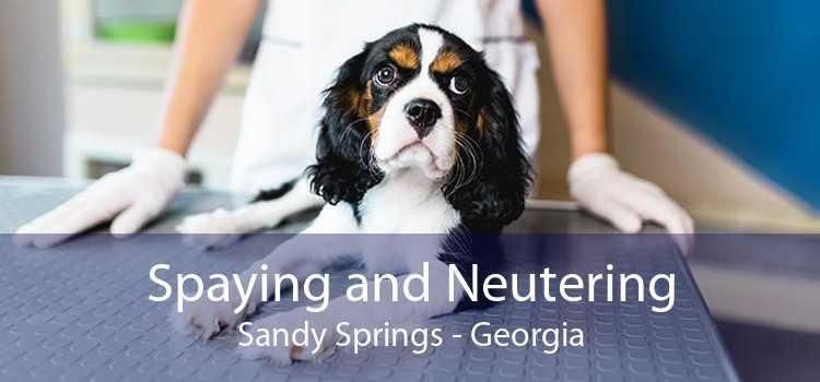 Spaying and Neutering Sandy Springs - Georgia