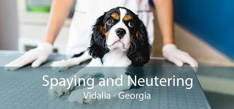 Spaying and Neutering Vidalia - Georgia