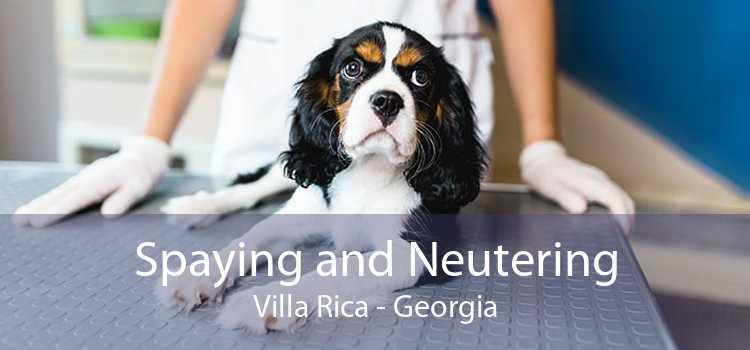 Spaying and Neutering Villa Rica - Georgia