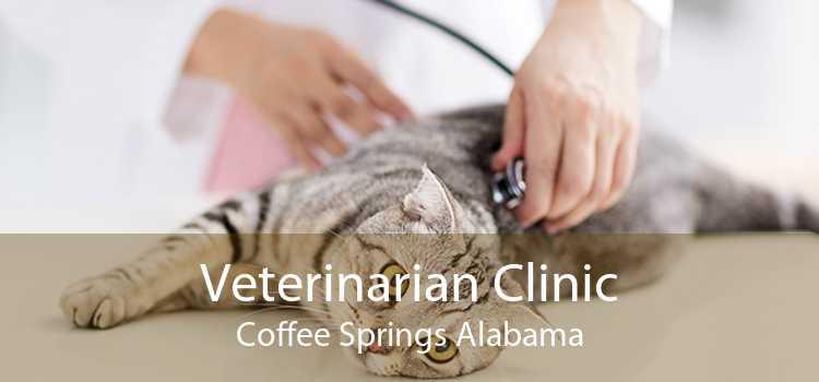 Veterinarian Clinic Coffee Springs Alabama