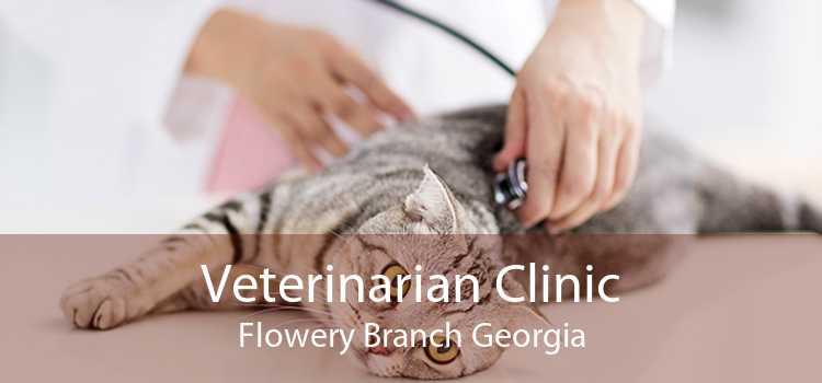 Veterinarian Clinic Flowery Branch Georgia