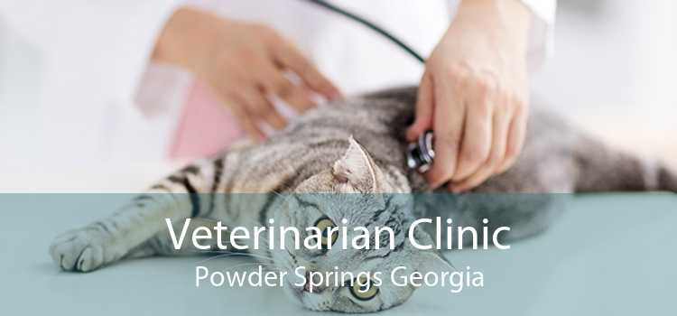 Veterinarian Clinic Powder Springs Georgia